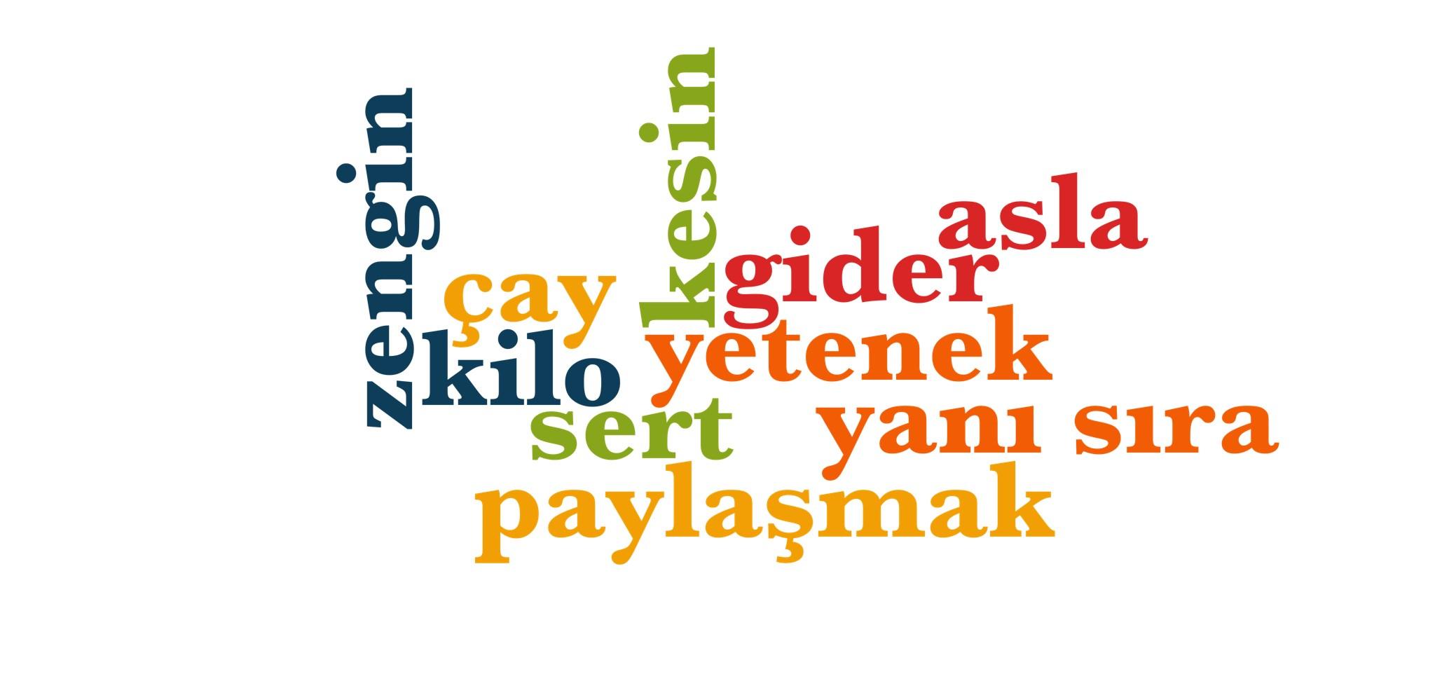 Wörter 941 bis 950 der 1000 häufigsten Wörter der türkischen Sprache